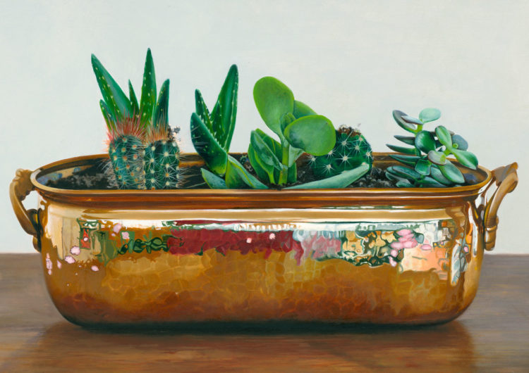 Still Life with the title 'Kakteen'. Original oil painting on canvas 60x80cm