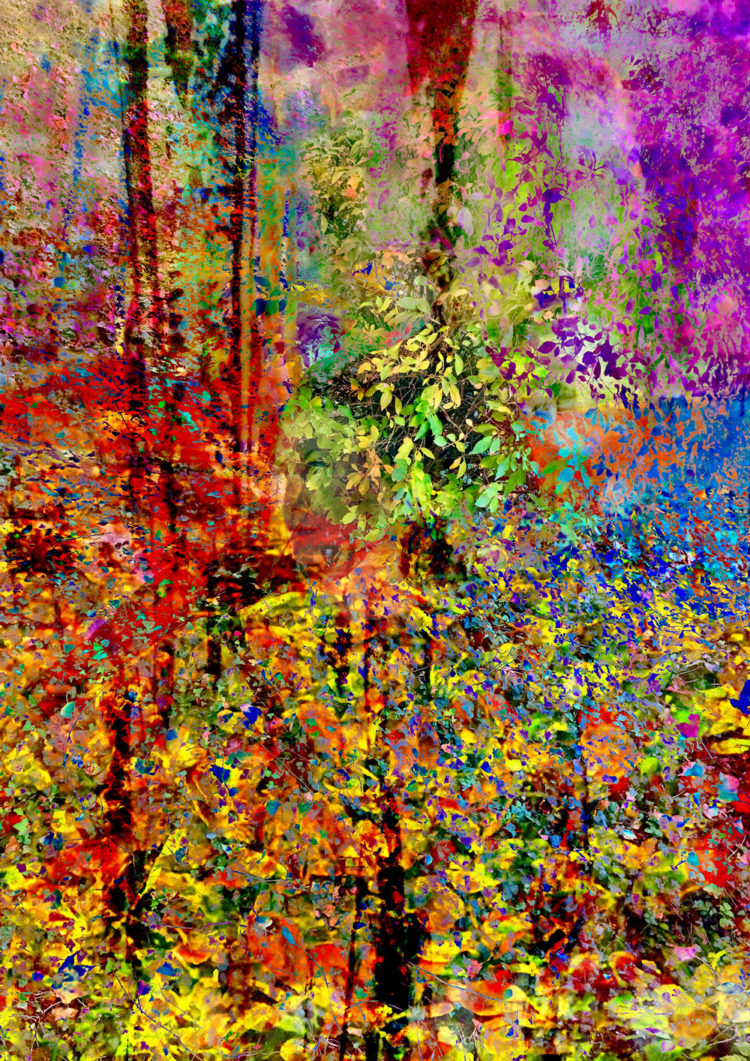 Digital artwork with the title 'Nature Beauty'. A creative photographic collage, combined with acryl paint