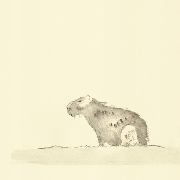 Eine Illustration mit dem Titel 'Wasserschwein', gemalt mit Aquarell und Tusche.
