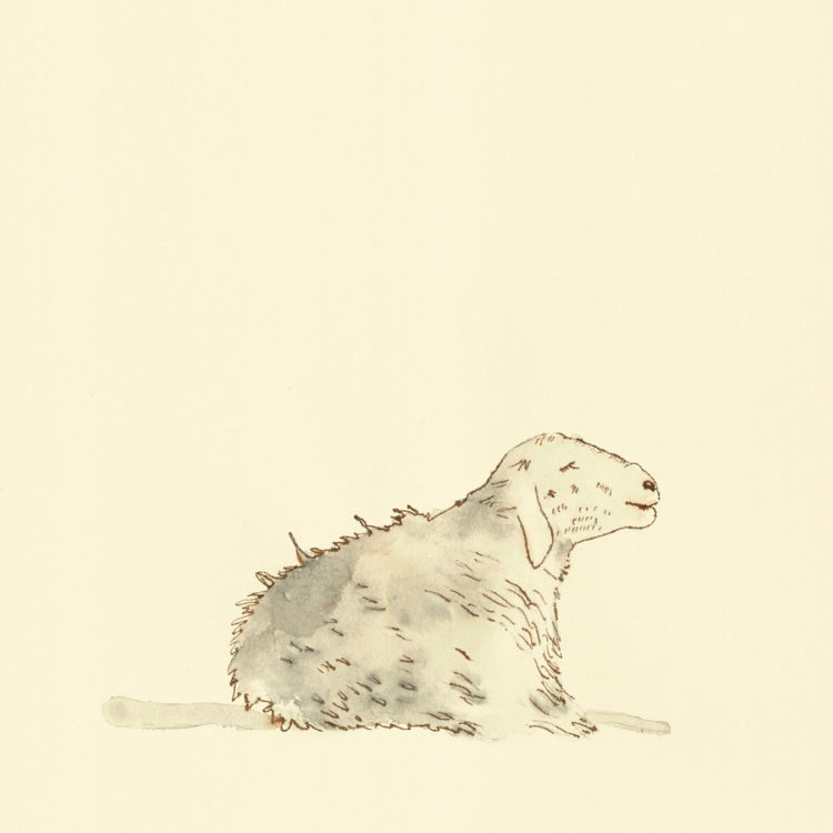 Illustration with watercolor and ink with the title 'Sheep'