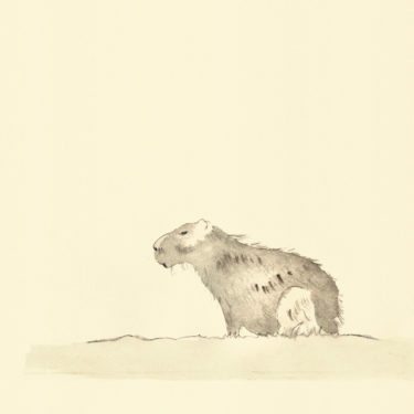 Illustration with the title 'Capybara', painted with watercolour and ink.