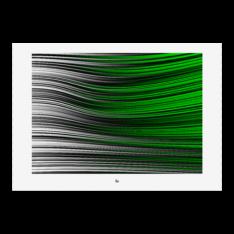 Julian Fahrenholz - Green Flag - Fineart print